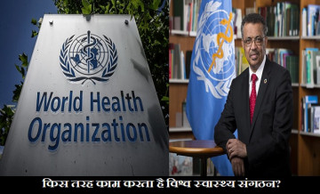 World Health Organization, How WHO Work