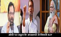 rahul attack modi, bjp leaders on rahul statement