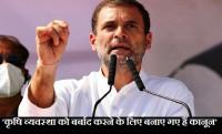 Rahul Gandhi, Wayanad