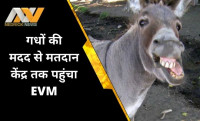 Tamil Nadu, EVM loaded on Donkeys