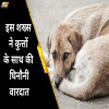 SORRY SHERU, MUMBAI DOG RAPE CASE